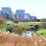 おしゃれに盛り上がる!新横浜でおすすめのパブを紹介
